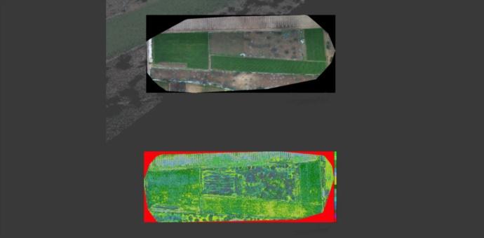 Droni e l'agricoltura di precisione – Precision Farming